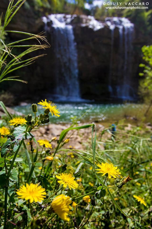 cascata corleone