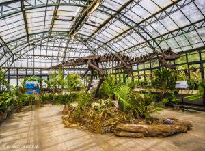 Dinosauri a Palermo
