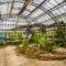 Arrivano i dinosauri a Palermo: all'Orto Botanico due importanti esemplari