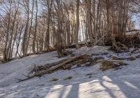 Neve sull\'Etna