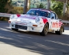 021 Targa Florio Historic Rally 2013 - © Armando Musotto