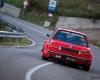 029 Targa Florio Historic Rally 2013 - © Armando Musotto