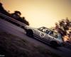032 Targa Florio Historic Rally 2013 - © Armando Musotto