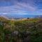 Escursione a Montagna Grande: una terrazza naturale sul golfo di Palermo