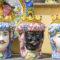 Santo Stefano di Camastra e la tradizione della ceramica
